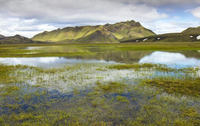 Fundi fyrir nýliða frestað